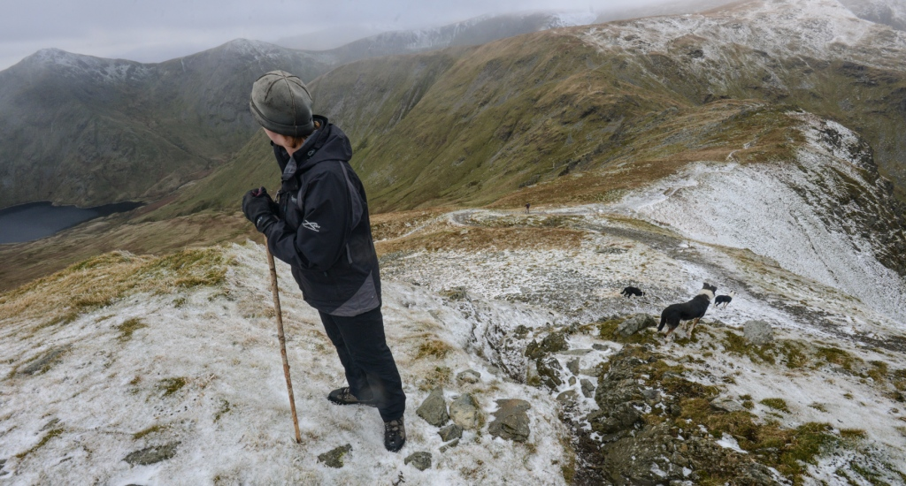 Gathering sheep from Nan Bield pass at the head of the Kentmere Valley