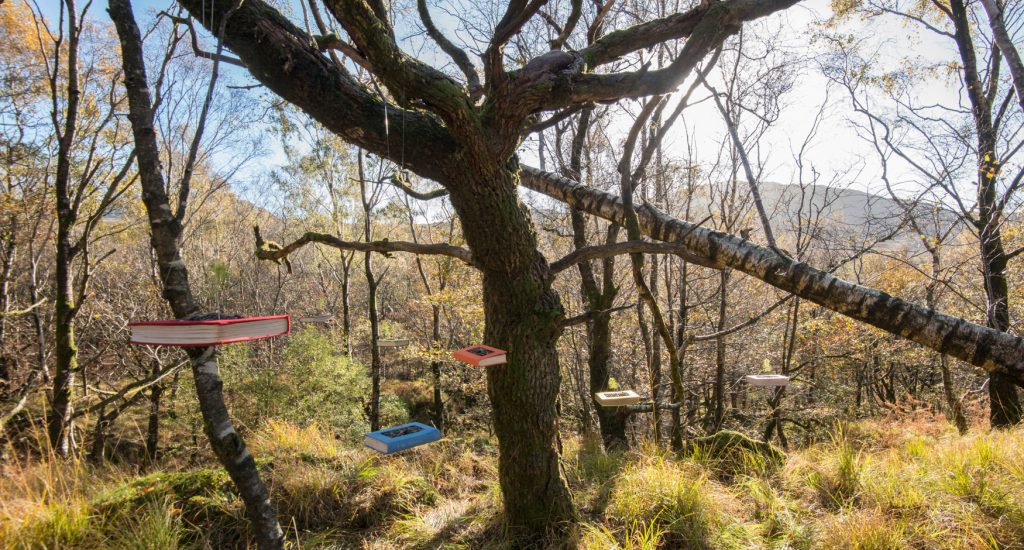 the seven hanging Everwhere Associates books in the Duddon Valley