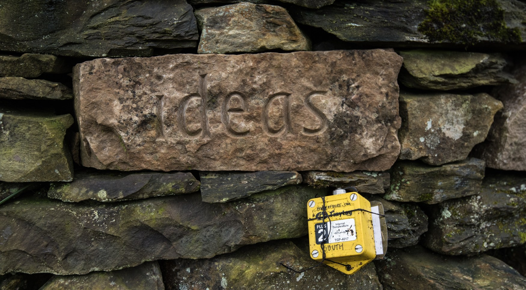 Tiny Tag South placed on our sculpture, treefold:centre