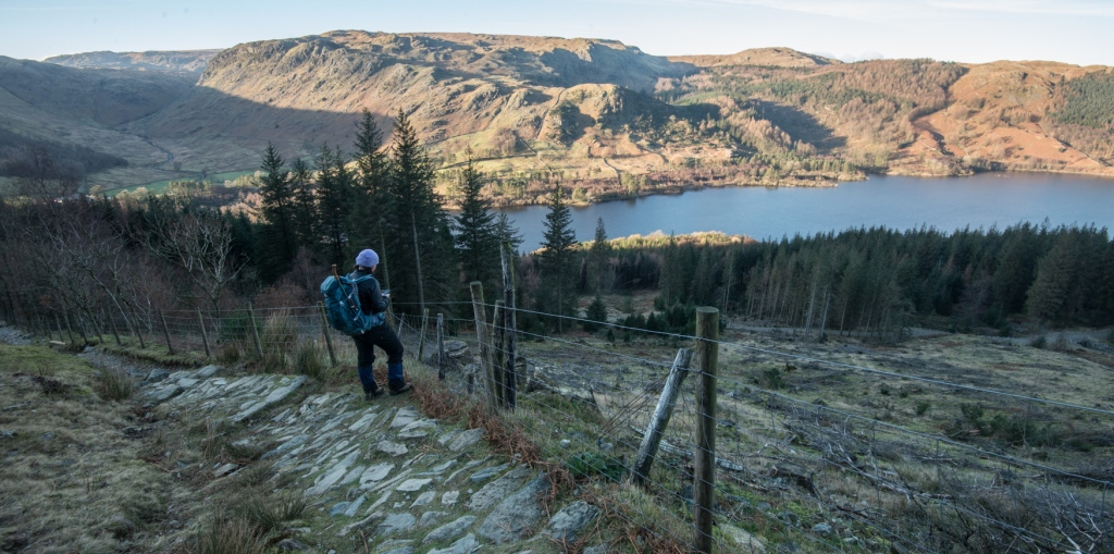 Harriet making notes above the treeline with Thirlmere in the background