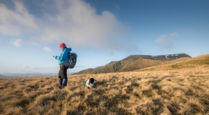Making notes on Scales fell with Blencathra behind.